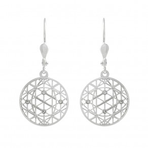 Silver Earrings NA5126